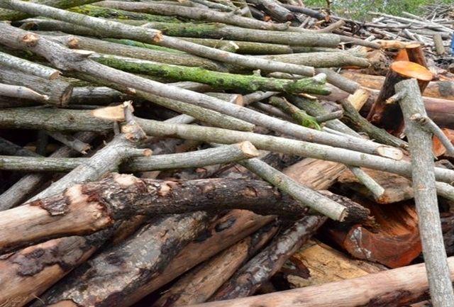 کشف 33 تن چوب جنگلی قاچاق در سیاهکل