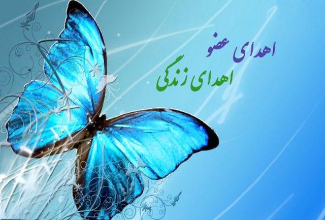 اهدای عضو در کرمان جانی دوباره به یک بیمار داد