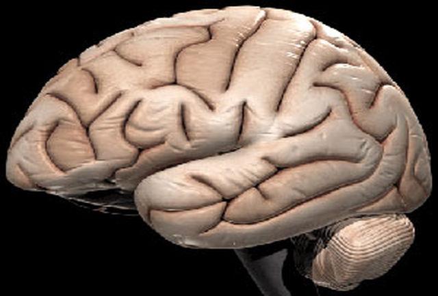درمان سرطان مغز