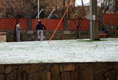 سرما و برف سری عصرمدارس اردبیل را تعطیل کرد