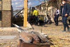 مرگ دو پرنده قمری در انفجار خرم آباد