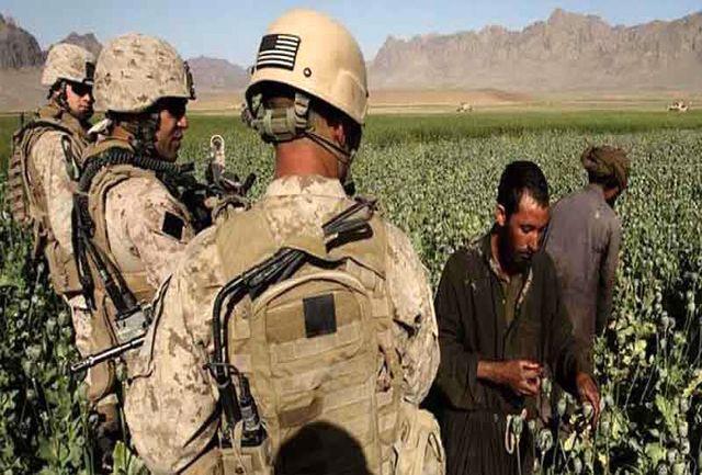 نقش آمریکا و گروههای تروریستی در توسعه کشت مواد مخدر در افغانستان