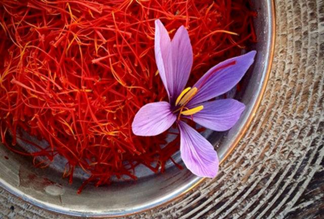 افزایش ۱۴ درصدی تولید زعفران در استان کرمان