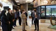 رئیس سازمان حفاظت محیط زیست از موزه پردیسان بازدید کرد