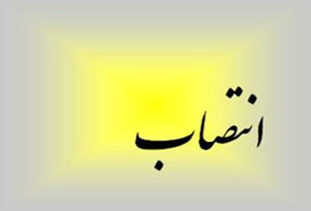 محمدرضا پورحسن مدیر روابط عمومی شبكه اول سیما شد