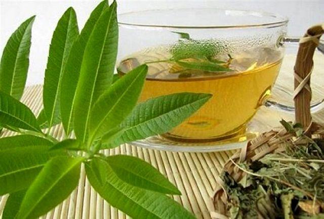 با این چای های گیاهی به جنگ با ویروس ها بروید