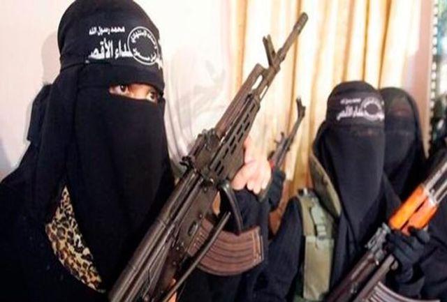 شمار کشتههای حمله داعش در نیجریه به ۳۰ تن رسید