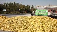 آغاز خرید نامحدود سیب صنعتی آذربایجانغربی توسط آستان قدس رضوی