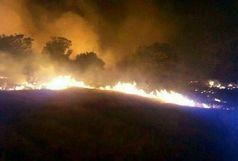 خسارتهای فراوان چهار حادثه آتش سوزی به مراتع قزوین