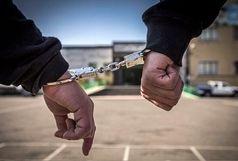 دستگیری سارق حرفهای با ۶۲ فقره سرقت در ارومیه