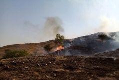 آتش سوزی بزرگ و گسترده در جنگل های ماژین