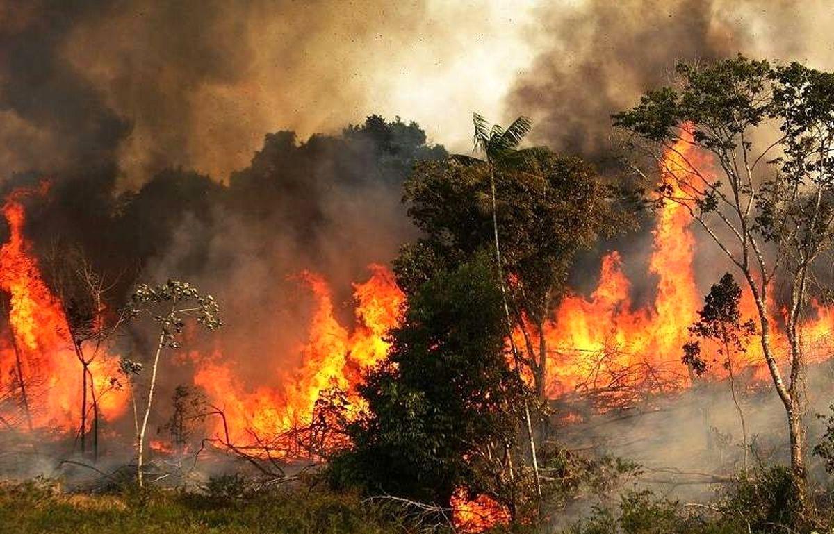 پس از ۷ شبانه روز آتش سوزی کوه های گچساران مهار شد