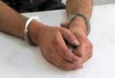 دستگیری سارقان الماس/  تلاش پلیس برای کشف الماس 50 قیراطی