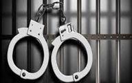 شناسایی و دستگیری دو سارق در دلگان