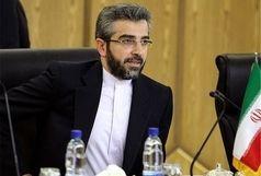 واکنش دبیر ستاد حقوق بشر به سخن پراکنی مقامات سه کشور غربی