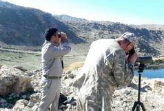سرشماری پرندگان آبزی و کنارآبزی در تالابهای پلدختر