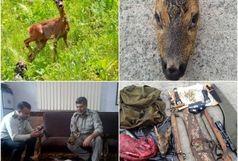 دستگیری شکارچیان گوزن در سیاهکل