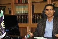 دکتر ولی زاده در سمت ریاست دانشگاه شهید مدنی آذربایجان ابقا شد