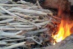 یک کوره زغال سازی غیرمجاز در شهرستان بندرعباس کشف وتخریب شد