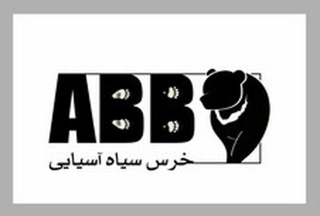 معرفی پروژه حفاظت از خرس سیاه آسیایی در هرمزگان