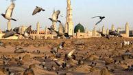جسارت وهابیون به قبرستان بقیع در مستند «بهشت ماندنی است»