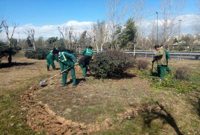 آغاز عملیات به زراعی در بیش از 1300 هکتار فضای سبز