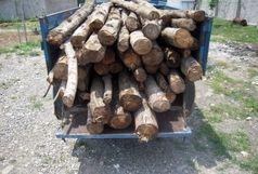 2 تن چوب قاچاق در مهران کشف شد