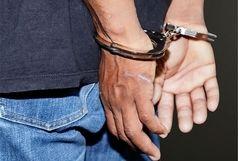 دستگیری حیوان آزار در شفت