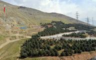سند طرح مدیریت بهره وری بوستانهای چهارگانه جنگلی شمال تهران امضا شد