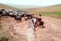 تهیه و توزیع 99 دستگاه آبشخور از محل صندوق توسعه ملی