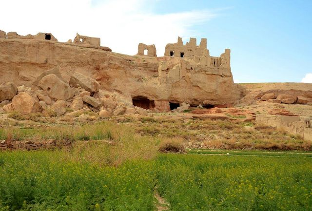 «بیابوم» به شیراز سفر میکند