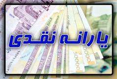 طرح حمایت معیشتی دولت ارتباطی به یارانه ندارد