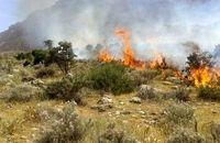آتشسوزی در مراتع شهرستان مهدیشهر ۸۵ درصد کاهش یافت