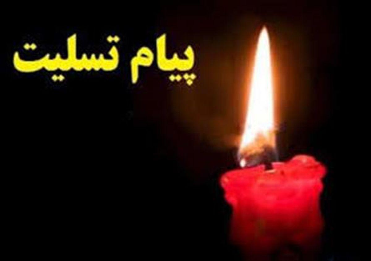 آیت الله مکارم شیرازی در سوگ برادر نشست