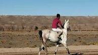 افتتاح اولین باشگاه سوارکاری طبس  / شناسایی بیش از ۷۰ راس اسب