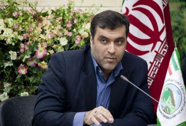 تلاش وزیر کشور برای استیفای حق داوطلبان ردصلاحیت در انتخابات شوراها