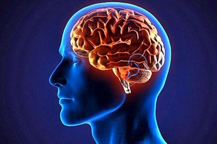 چگونه مغز تعداد اشیاء را بدون شمارش تخمین میزند؟