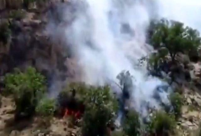 مهار آتش سوزی منطقه حفاظت شده کوه دیل گچساران