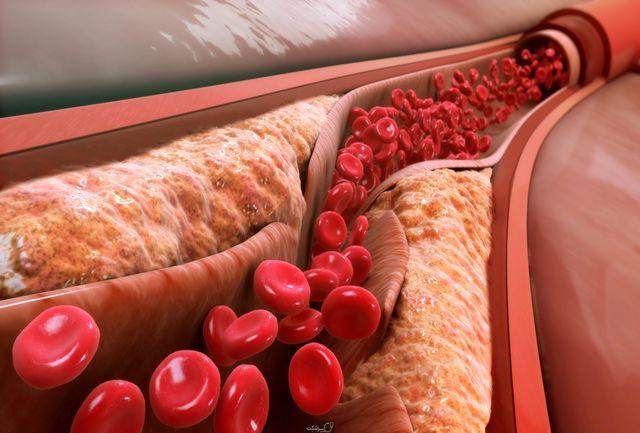 کشف یک پروتئین جدید برای سالم نگه داشتن خون
