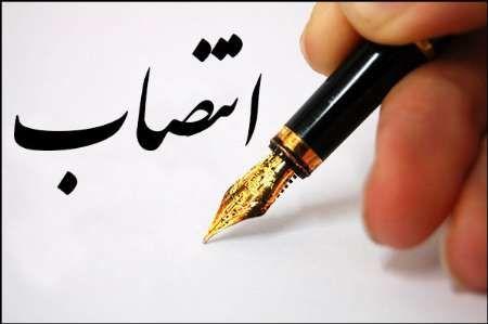 مدیر حوزه هنری کرمان معرفی شد