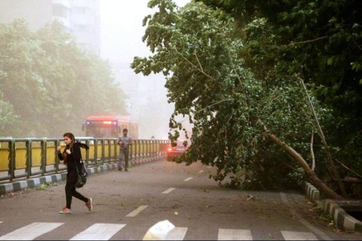 رعدوبرق و وزش باد شدید در راه تهران