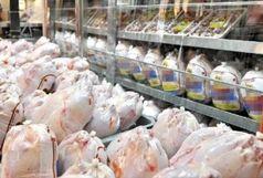 توزیع 157 تن گوشت مرغ در سیستان و بلوچستان
