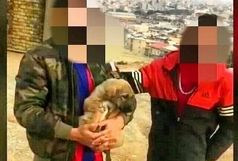 دستگیری جوان حیوان آزار در ارومیه