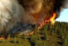 دستگیری عاملان آتش سوزی مراتع طارم