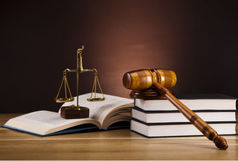 واکنش رییس دادگستری فارس به شکنجه شدن نوید افکاری