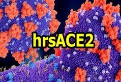 درمان آزمایشی کرونا با داروی hrsACE ۲
