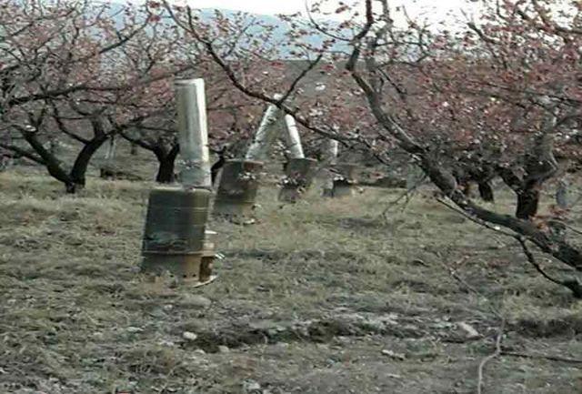 باغداران استان دمای محیط باغ ها را افزایش دهند