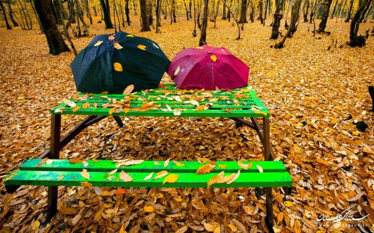 جشنواره پاییز هزار رنگ نیمه اول آدر برگزار میشود