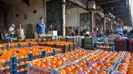 کاهش ۵۰ درصدی قیمت پرتقال در بازار
