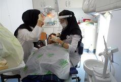 دندان های پایه هفتمیها رایگان درمان میشود